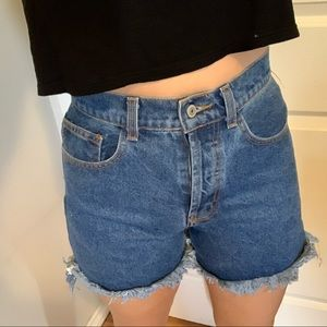 Brandy Melville-John galt high waisted shorts.